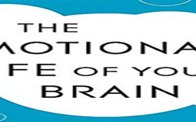 Richard Davidson e i 6 Stili Emotivi – parte 2: i Questionari di autovalutazione